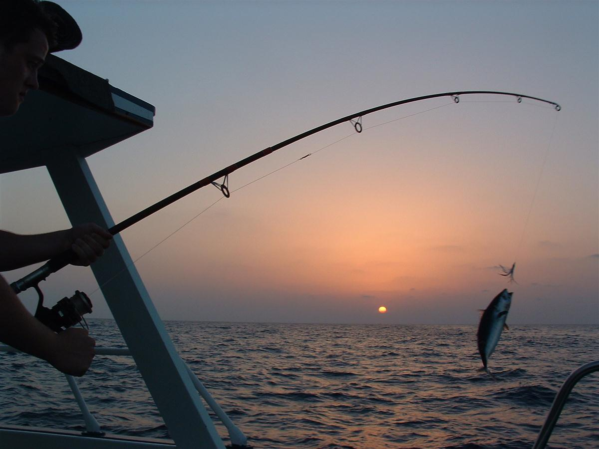 Exploring tourism qatar travel agency tour operator for Fishing vacation packages
